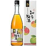 中埜酒造 國盛 知多梅酒 [ リキュール 720ml ]