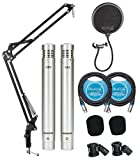 Samson C02 Pencil Condenser Microphone Pair for Vocals, Acoustic Guitars, Pianos, Overhead Drums, Hi Hats Bundle with Blucoil 2-Pack of 10-FT Balanced XLR Cables, and Boom Arm Plus Pop Filter