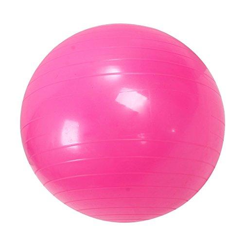 ACAMPTAR Sport Pilates Yoga Fitness Ball Gymnastikb?Lle Erdnuss üBungen Balance Gymnastic Pad 55Cm Rosa