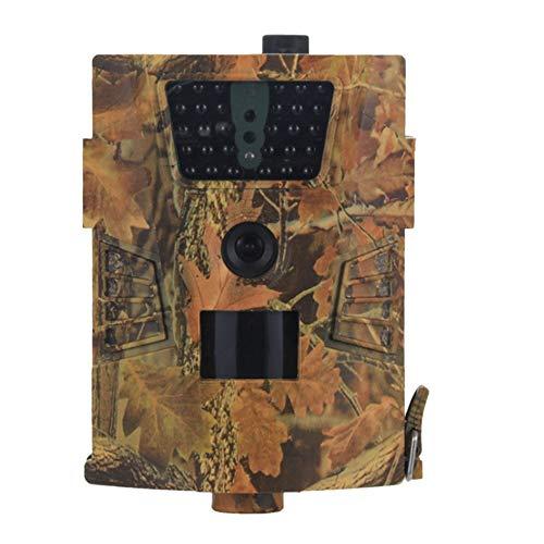 Basage Camara de vigilancia salvaje versión nocturna de vida silvestre cámaras de exploración de la vida silvestre trampas de
