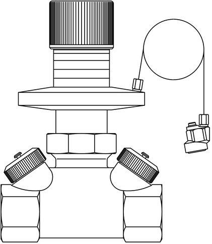 'Oventrop différence Régulateur de pression hycocon DTZ PN 16, 50–300 Mbar DN 50, 2 IG