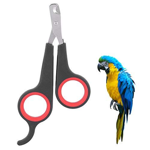 Atyhao Tijeras para uñas para Mascotas, pájaro Loro, Accesorios para Animales pequeños, Herramienta de Aseo, Tijeras para uñas, cortaúñas, Negro y Rojo