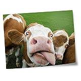 Destination Vinyl Prints 15,2 x 10,2 cm – Ny Vache, animaux de la ferme, impression artistique sur papier photo satiné brillant 280 g/m² #16988