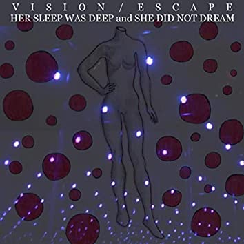 Her Sleep Was Deep and She Did Not Dream