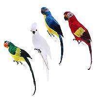 CUTICATE 4本のカラフルな鳥の羽のリアルな家庭菜園の装飾飾りオウム鳥