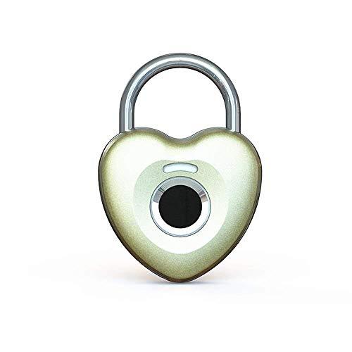 XJJZS Fingerprint Padlock Smart Touch Lock Metal Waterproof Anti-Theft Intelligent Keyless for Gym Locker, School Locker Lock, Backpack, Suitcase, Travel Luggage (Color : Gold)