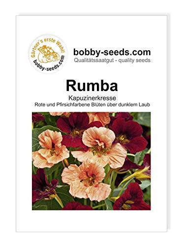 Rumba Kapuzinerkresse von Bobby-Seeds Portion