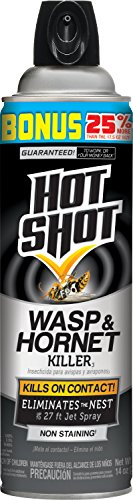 Raid Wasp and Hornet Spray