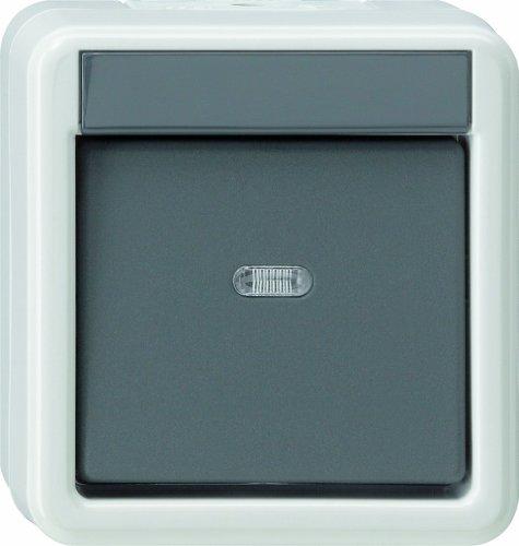 Gira Wippschalter 010730 Kreuzschalter WG AP, 250 V, Grau, Weiß