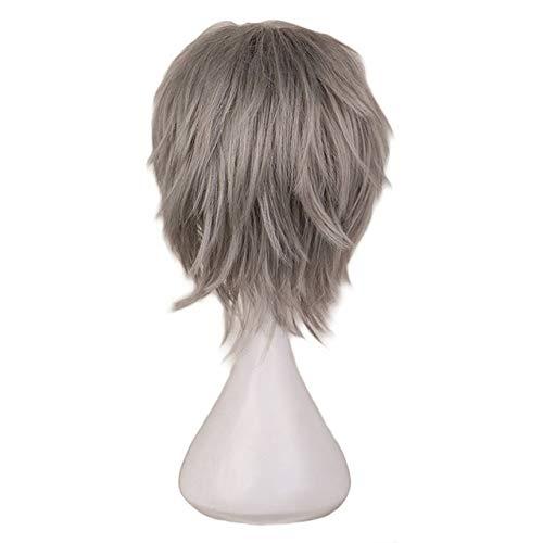 KYT-ma Rouge Blanc Noir Violet Cheveux Courts Cosplay Perruque Homme Party 30 cm Haute température Fibre Perruques de Cheveux synthétiques (Couleur : Gray, Taille : 12inches)