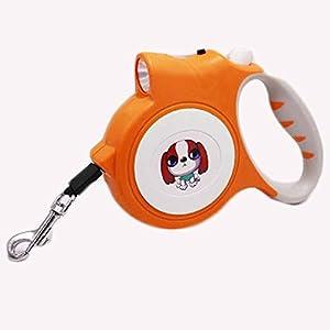 Rallonge de laisse pour chien Laisse rétractable pour chien Petite Moyenne Roll 5m Laisse pour Animaux de Compagnie d'entraînement pour chien chat Bâton Laisse, vous recevez sans collier et harnais après le principe de l'aléatoire