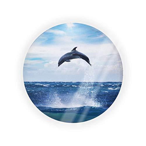 Dolphin - Caja de cojín de aire vacío, caja de cojín para maquillaje, maquillaje de BB CC, contenedor para base de crema líquida