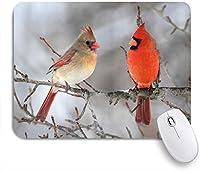 KAPANOUマウスパッド 木の鳥類学鳥類野生動物相の北の枢機卿の鳥のペア ゲーミング オフィス おしゃれ 防水 耐久性が良い 滑り止めゴム底 ゲーミングなど適用 マウス 用ノートブックコンピュータマウスマット