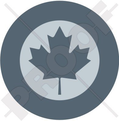 CANADA Canadian Air Force RCAF AIRCOM LowVis Aircraft Roundel 4