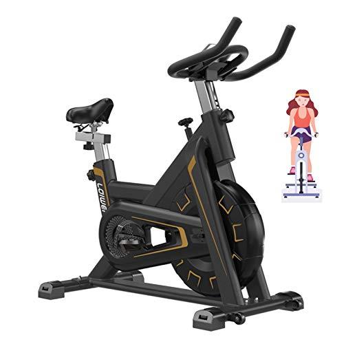 IJNBHU Bicicleta estática/Indoor Cycling, Bicicleta Estáti