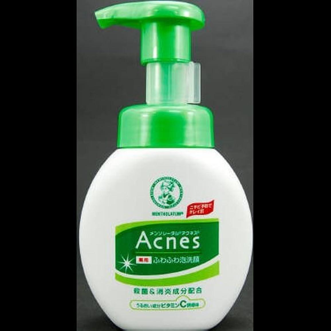 【まとめ買い】アクネス 薬用ふわふわ泡洗顔 160mL ×2セット