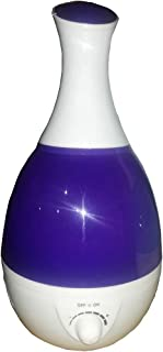 steam vane 2.4 L with 220 volt light with the possibility of adding Essen oil with a violet color