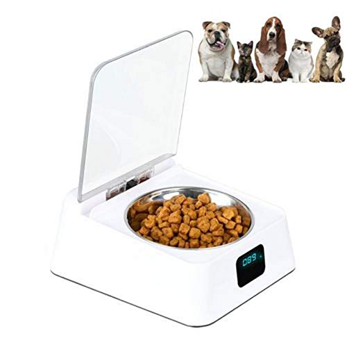 shewt Katzen und Hunde Feeder.Futterautomat Katze Hunde,Neuheit mit automatischem Öffnen und Schließen, um schlechten Geruch, Schädlinge und feuchte Lebensmittel zu vermeiden