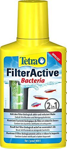 Tetra FilterActive Bacteria - 2in1 Mix aus lebenden Starterbakterien und schlammreduzierenden Reinigungsbakterien, hält den Filter biologisch aktiv und reduziert Mulm, 100 ml
