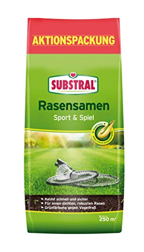 Substral Rasensamen Sport und Spiel, strapazierfähige Rasensaat-Mischung mit Grünfärbung gegen Vogelfraß, 5kg , 250m²