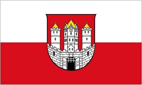 Fahne/Flagge Österreich - Salzburg Stadt 90 x 150 cm
