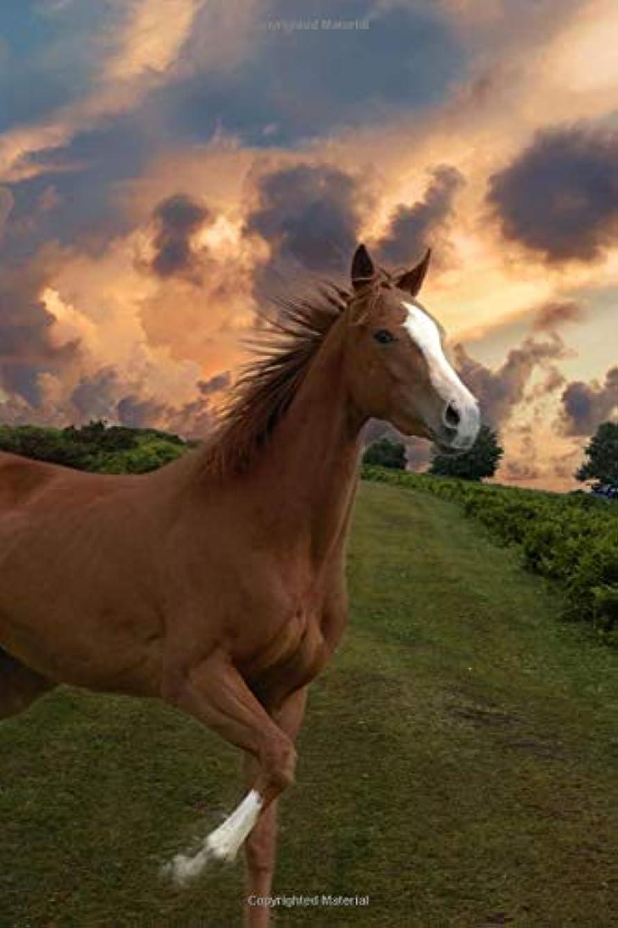 レッスンジャンクション解き明かすHorse Journal: Horse Themed College ruled 6x9 Diary / Journal