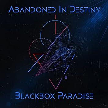 Blackbox Paradise