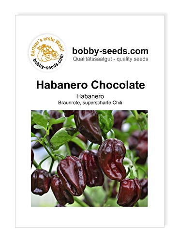 Bobby-Seeds Chilisamen Habanero Chocolate Portion