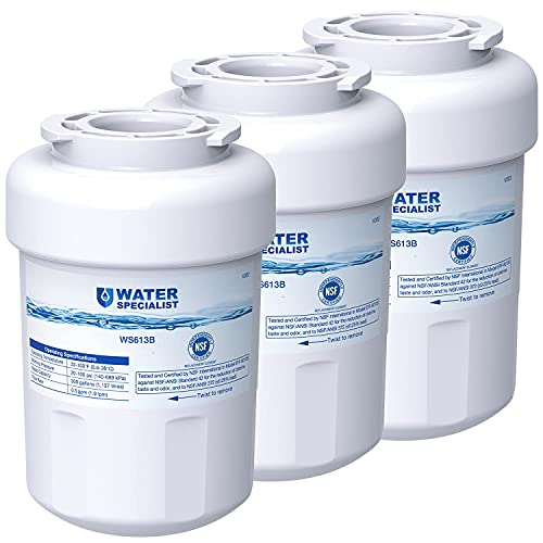 Waterspecialist MWF Refrigerator Water Filter, Replacement for GE SmartWater MWFP, MWFA, GWF, HDX FMG-1, WFC1201, GSE25GSHECSS, PC75009, RWF1060, 197D6321P006, NSF Certified, 3 filters