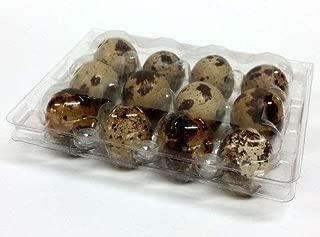 Quail Egg Cartons, 50 pieces, Hold 12 eggs (1 dozen) small quail hen clear plastic pvc stackable