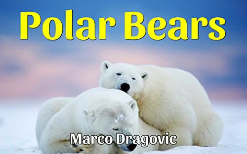 Polar Bears: Fun Facts For Kids, Picture Books For Kids (English Edition)