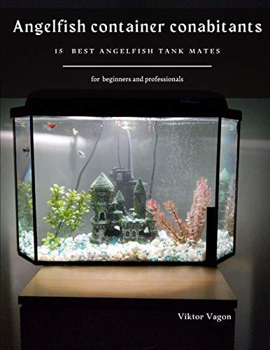 angelfish baby food - 3