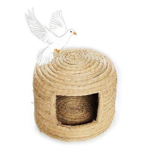HDAILE Conveniente Pigeon Bird Nest Egg Caliente Nido de pájaro de la Paloma Suministros Utensilios Palomar cría de Palomas en Rack Caja Nido for criadores Par Paloma enjaulada (Size : 35 * 25CM)