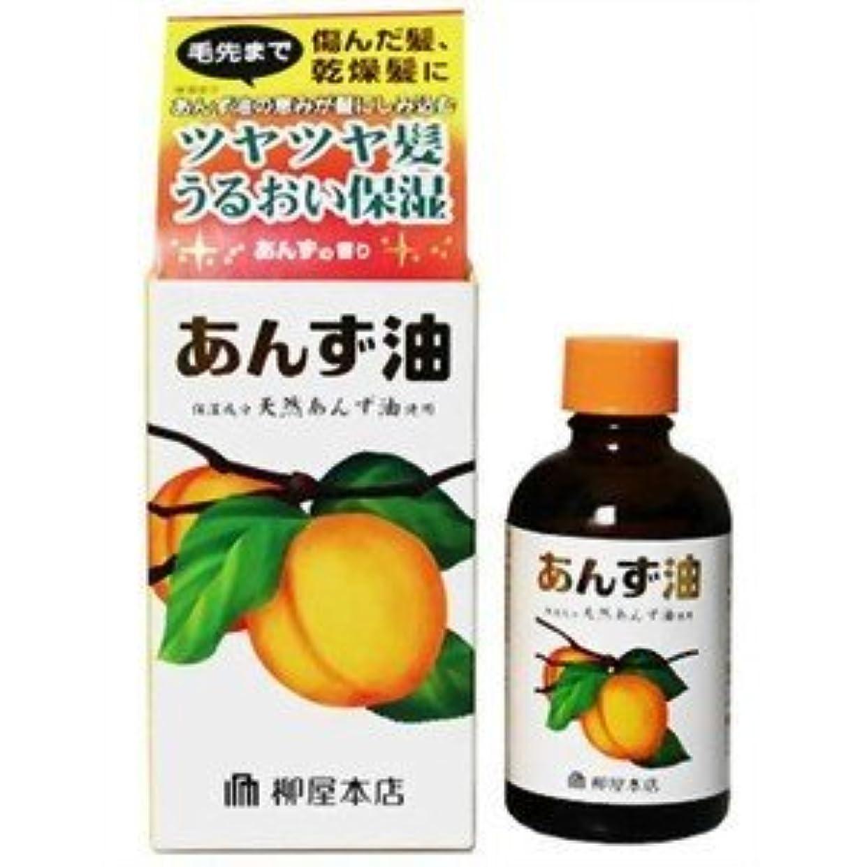 飼料解放義務【柳屋本店】あんず油 60ml