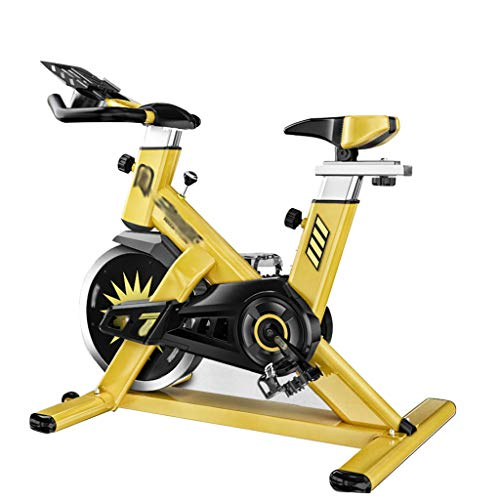 FLAMY Spin Bike,Cyclette,Aerobico Formazione Ciclo,Professionale Cyclette Home Trainer, Comodo bracciolo,Grande volano,Sistema di Resistenza Infinito