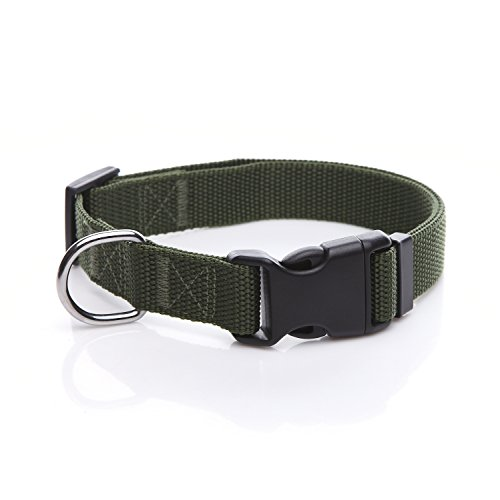 Durable Adjustable Nylon Dog Collar, 1 Inch Wide, for Large Medium Dogs (Green)