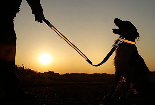 PRECORN LED Hunde-Leine Leuchtend Leuchtleine Sicherheitsleine Leine Hund Hundeleine Halsband orange