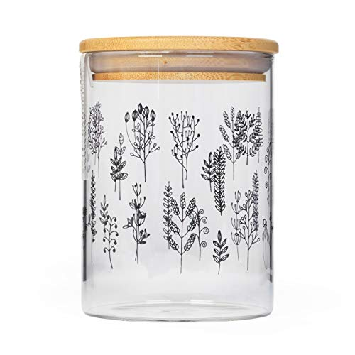 Cambridge CM07282 - Tarro de cristal para almacenamiento de plantas, 650 ml, tapa de bambú, perfecto para almacenar pasta seca, arroz, harina, galletas, granos