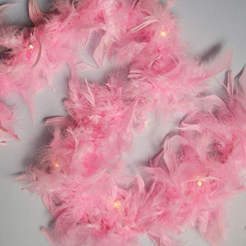 Qbis Pink Fairy Lights with Feathers Battery Powered Garland Lights with On/Off/Timer Modes (Feather Garland (Pink))