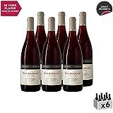 Bourgogne Pinot Noir Rouge 2018 - Château d'Etroyes - Vin AOC Rouge de Bourgogne - Cépage Pinot Noir - Lot de 6x75cl