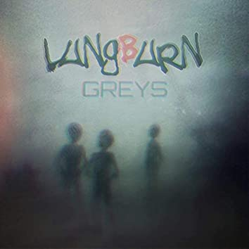 Greys (feat. Jeremy Schaeffer & Jordan Taylor)