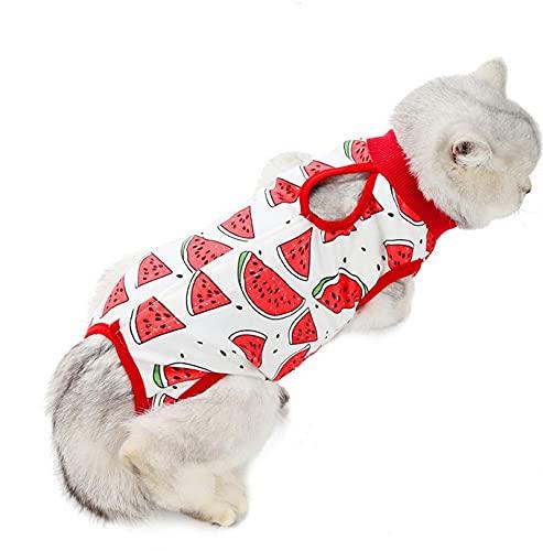 LxwSin Traje de Recuperación para Gato, Chaleco de Recuperación para Gato, Traje de Recuperación de Gato Transpirable de Algodón Antilamido para Gatos, Perros, Recuperación de Heridas, Destete (M, L)
