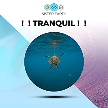 !  ! Tranquil !  !