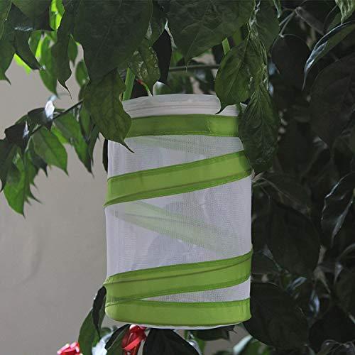 NIBESSER Schmetterlinge Züchten Schmetterlingsgarten für Kitas