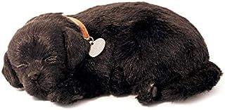 Perfect Petzzz 4910 – pluche hond – labrador – zwart