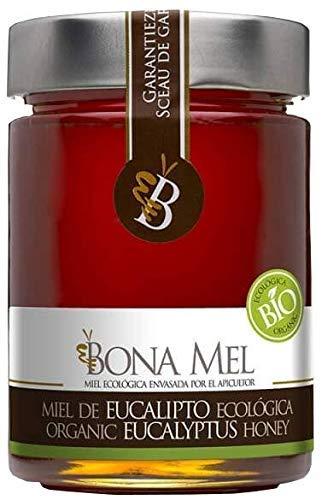100% roher Eukalyptus Honig / naturbelassen / reine Imkerabfüllung aus Spanien/ Höchste Qualität/ Ohne Zusatzstoffe/Gluten Frei/450 GR