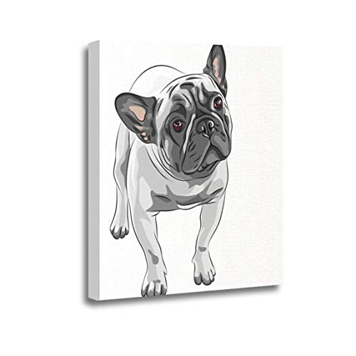 Ansouyi 12x16 Inches Canvas Wall Art Painting Closeup Portrait of The Domestic Dog Fawn French Bulldog Home Decorative Artwork Prints
