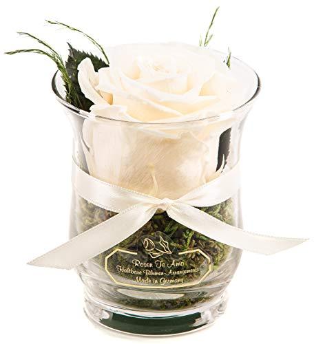 Rosen-Te-Amo – 1 Premium haltbare weiße Rose in der Vase mit echten Bindegrün; Infinity Blumen im Glas: 3 Jahre haltbar ohne Wasser perfekt als Geschenk oder Deko