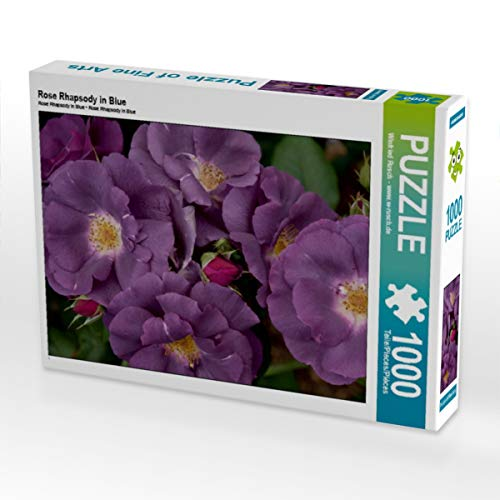 CALVENDO Puzzle Rose Rhapsody in Blue 1000 Teile Lege-Größe 64 x 48 cm Foto-Puzzle Bild von Winfried Rusch