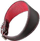 Arppe 195376045100 Collar Galgo Cuero Forro 3D Amazone, Negro y Rojo